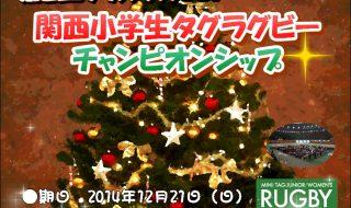 クリスマスCUP